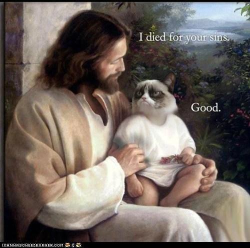Grumpy Cat LOL...