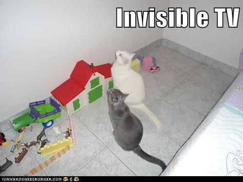 Invisible TV