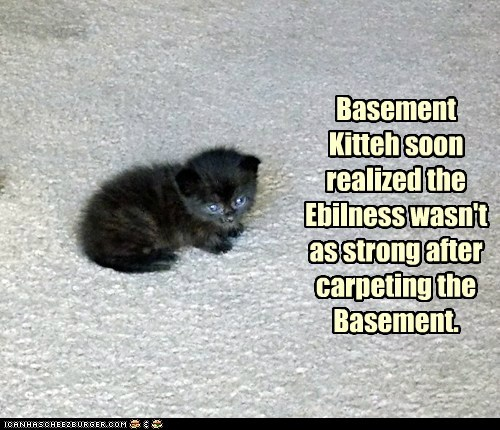 Basement Kitteh soon realized the Ebilness wasn't as strong after carpeting the Basement.