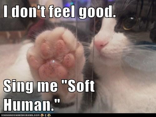 "I don't feel good.  Sing me ""Soft Human."""