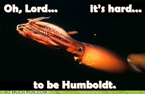 The Humblest Humboldt