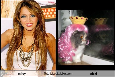 miley Totally Looks Like nicki