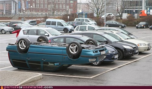 Winner of The D-Bag Parking Contest