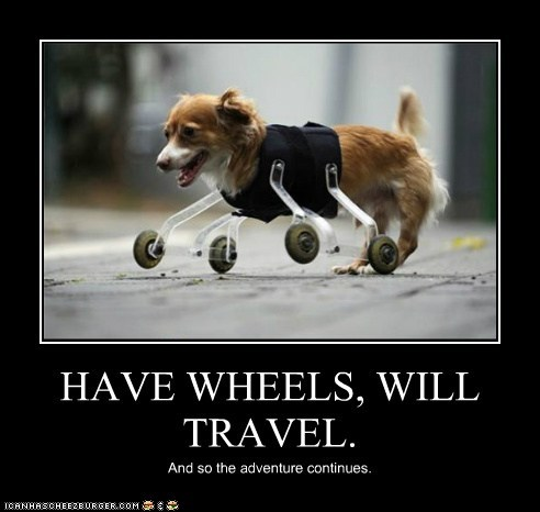 HAVE WHEELS, WILL TRAVEL.