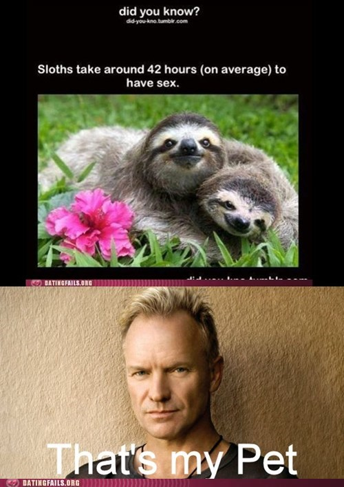 tantric,sting,true facts,sloth,funny