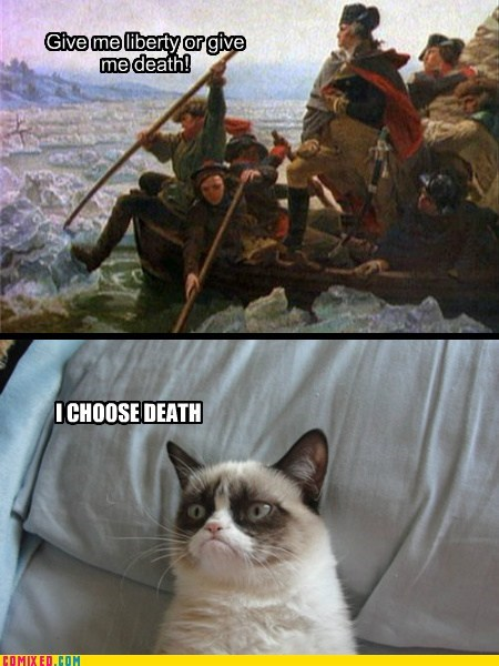 GRUMPY CAT DOESN'T LIKE HISTORY