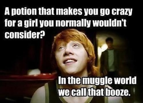 potions,Harry Potter,beer goggles,Ron Weasley