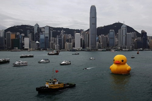 Giant Ducky in Hong Kong's Victoria Harbor? Why Not!