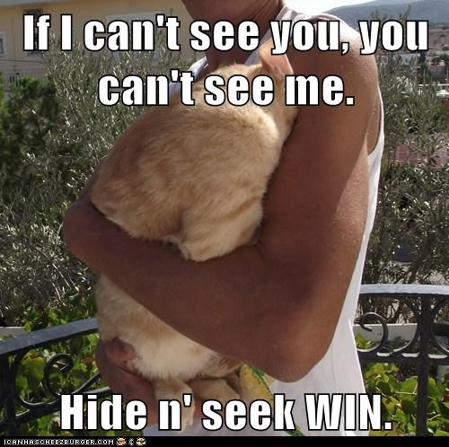 If I can't see you, you can't see me.  Hide n' seek WIN.