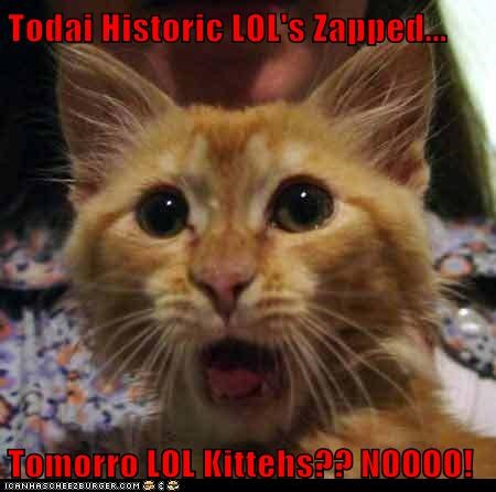 Todai Historic LOL's Zapped...  Tomorro LOL Kittehs?? NOOOO!