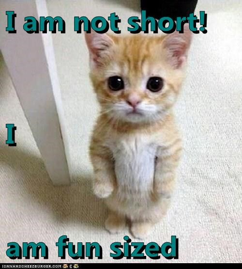 I am not short! I am fun sized