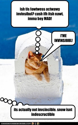 fortress cat feels invincible