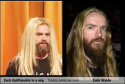Zach Galifianakis,wigs,totally looks like,funny,zakk wylde