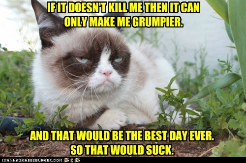 IF IT DOESN'T KILL ME THEN IT CAN  ONLY MAKE ME GRUMPIER.