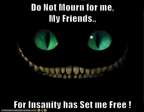 Do Not Mourn for me,                          My Friends..  For Insanity has Set me Free !