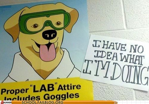 How Does Me a Lab Learn Lab Safety?