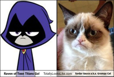 Raven of Teen Titans Go! Totally Looks Like Tardar Sauce a.k.a. Grumpy Cat