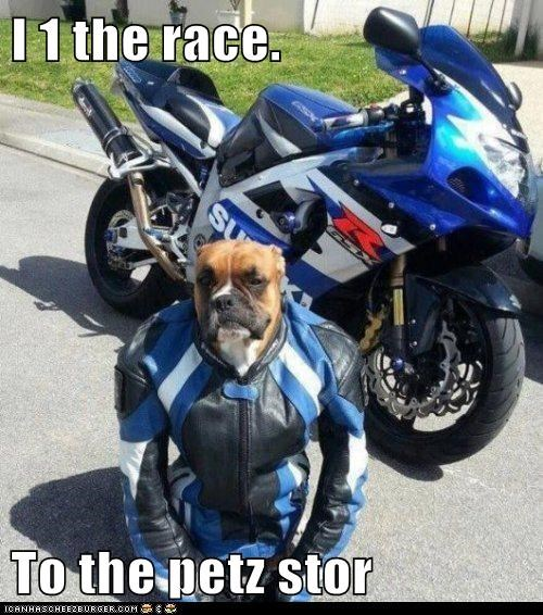 I 1 the race.  To the petz stor