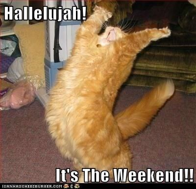 Hallelujah!  It's The Weekend!!