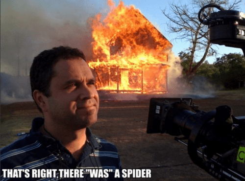 spiders,IRL,fire,funny