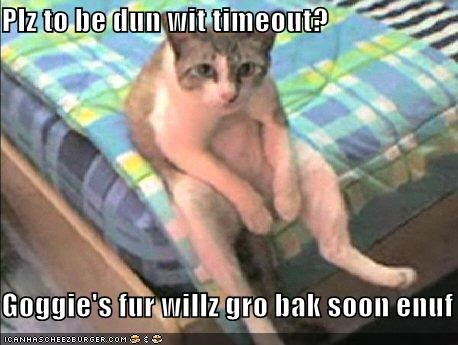 Plz to be dun wit timeout?  Goggie's fur willz gro bak soon enuf