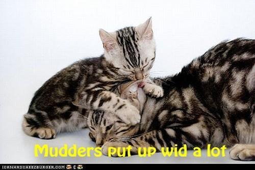 Why we luv our Mudders - 8