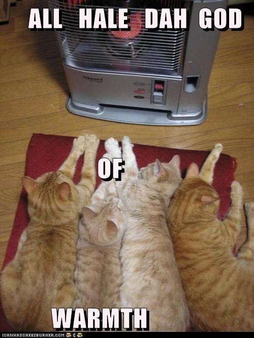 ALL   HALE   DAH  GOD                   OF          WARMTH