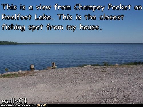 This is a view from Champey Pocket on Reelfoot Lake. This is the closest fishing spot from my house.                                             wally01