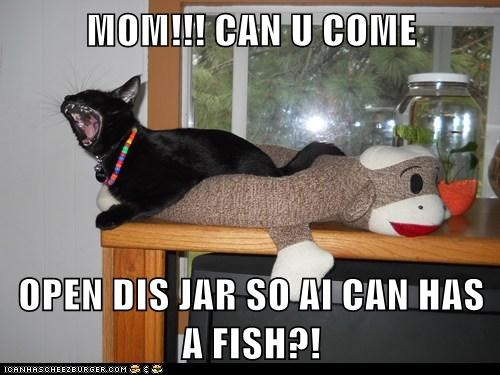 MOM!!! CAN U COME  OPEN DIS JAR SO AI CAN HAS A FISH?!