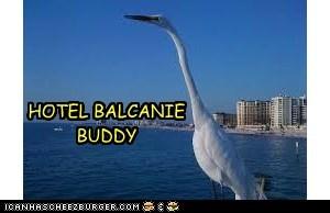 HOTEL BALCANIE BUDDY