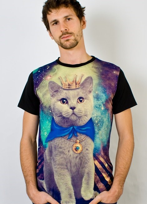 Cats,funny,space,win