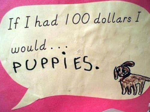 Who Wouldn't Puppies?