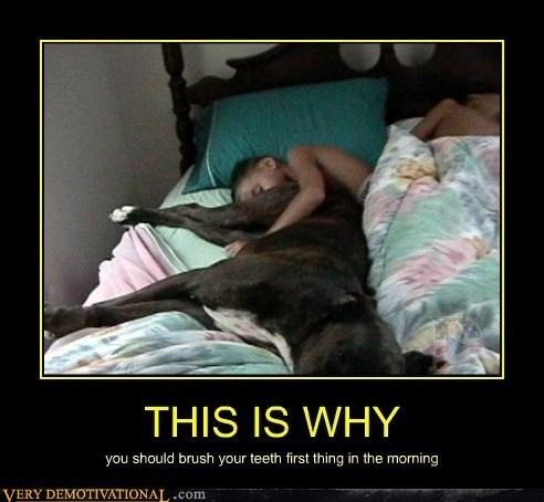 How Can You Sleep Like That?