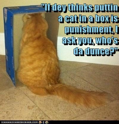 """""""If dey thinks puttin                       a cat in a box is                                                     punishment, I                                                      ask you, who's                                                       da du"""