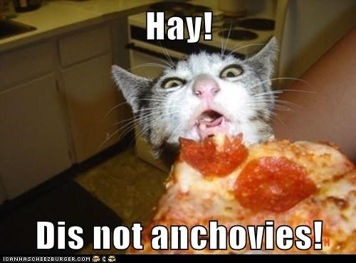 Hay!   Dis not anchovies!
