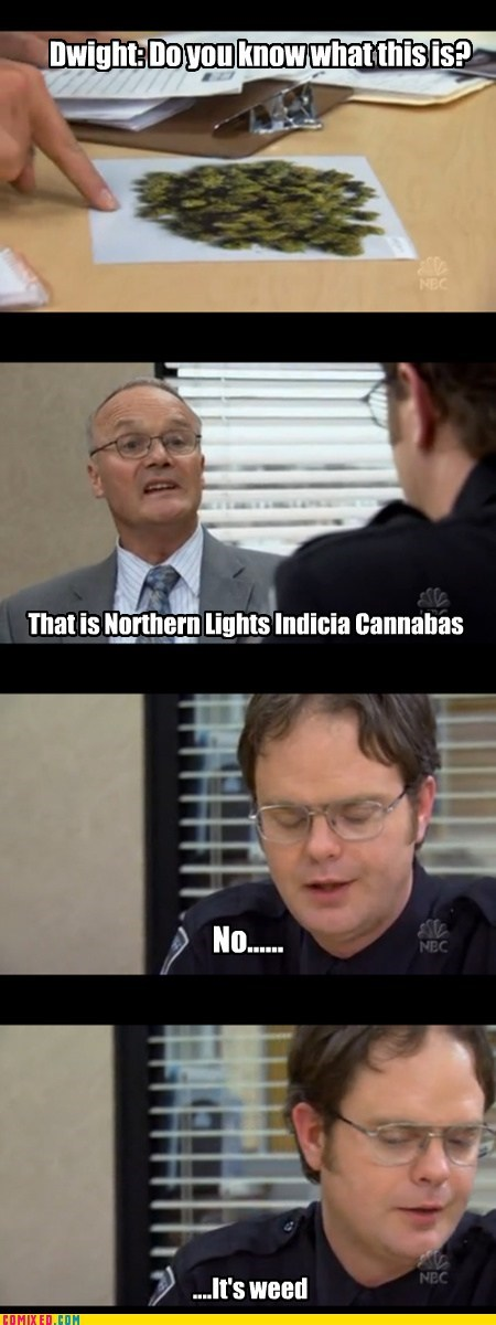 Creed from the Office discussing weed