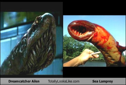 Dreamcatcher Ailen Totally Looks Like Sea Lamprey