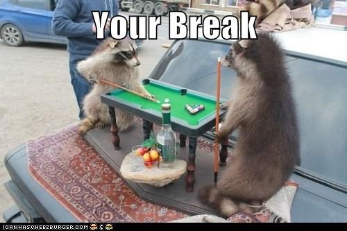 Your Break
