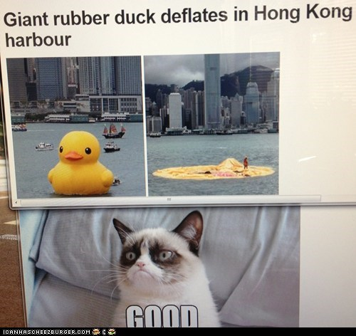 Giant Rubber Duck?