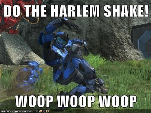DO THE HARLEM SHAKE!  WOOP WOOP WOOP