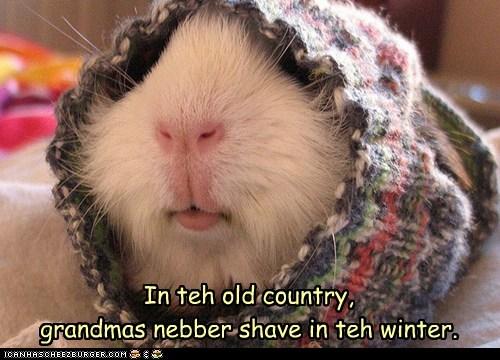 Iz bery cold der, yoo know.