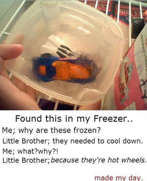 Don't You Read the Instructions? Freeze Before Use