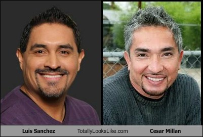 Luis Sanchez Totally Looks Like Cesar Millan