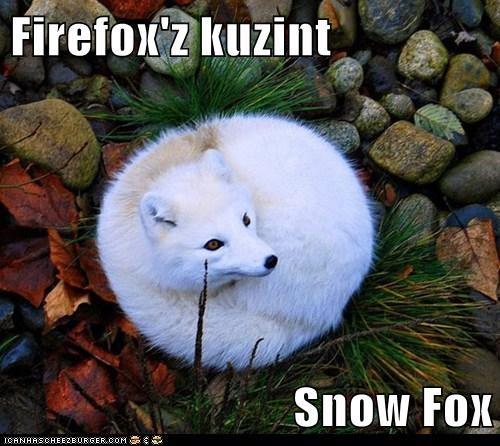Firefox'z kuzint  Snow Fox