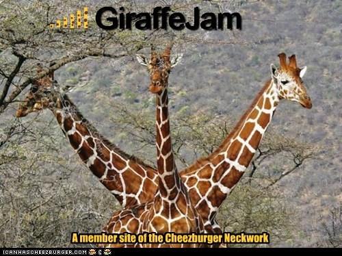 GiraffeJam