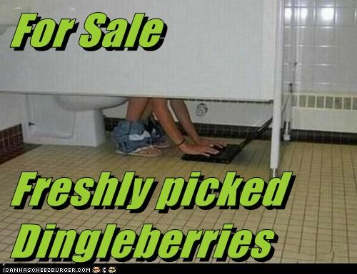 For Sale  Freshly picked Dingleberries