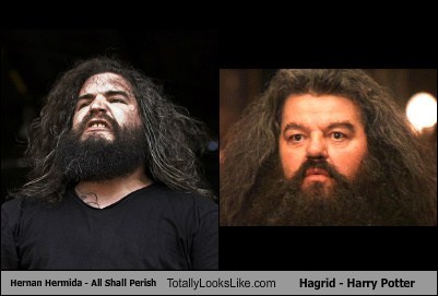 Hernan Hermida Totally Looks Like Hagrid