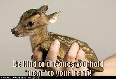 Especially Your Dear Deer