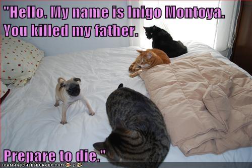 """Hello. My name is Inigo Montoya. You killed my father.  Prepare to die."""