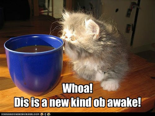 Coffee awake!